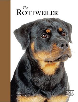 the-rottweiler