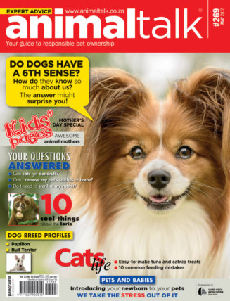 Animaltalk magazine