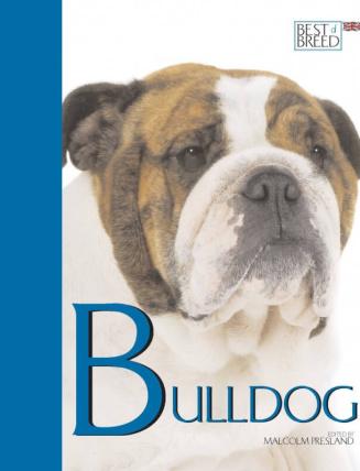 Bulldog BOB