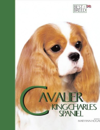 Cavalier BOB
