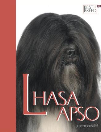 Lhasa Apso BOB