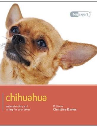 chihuahua de