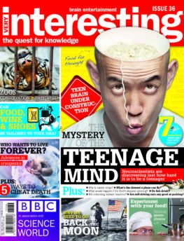 Very Interesting magazine